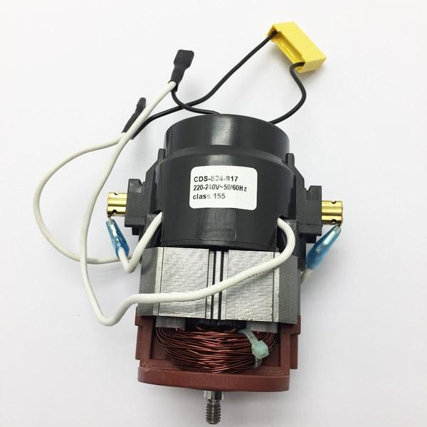 Moteur électrique 18026012 - Pièce détachée SWAP-europe.com