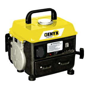 Portable petrol generator G800 SWAP-europe.com