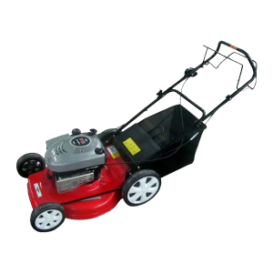 190CC BRIGGS SELF-PROPELLED PETROL LAWN MOWER, 50 CM CUTTING WIDTH RAC51BS675 SWAP-europe.com