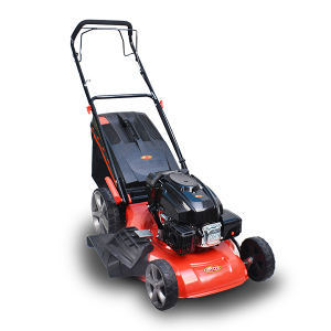 Petrol lawn mower 173 cm³ 50 cm - self-propelled  RAY57TD SWAP-europe.com
